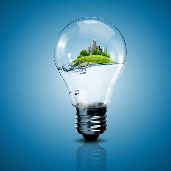 Лампочка с эколандшафтом внутри