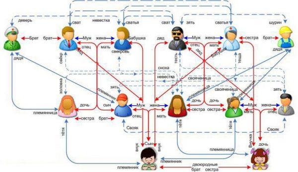 Схема родства