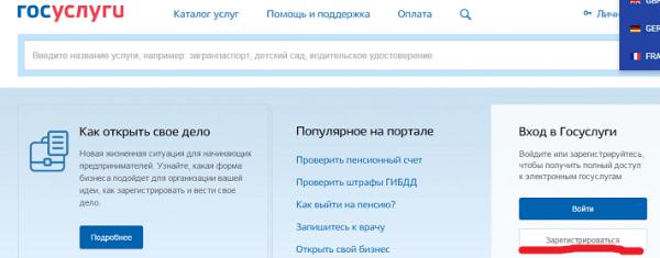 Скриншот сайта «Госуслуги»