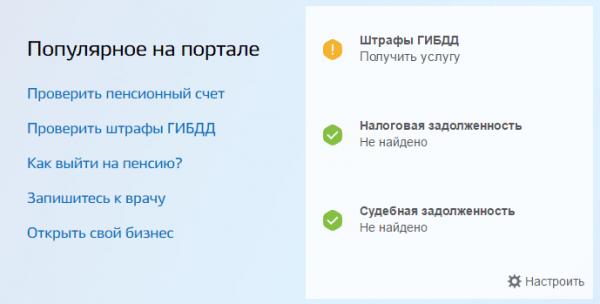 Скриншот портала госуслуг