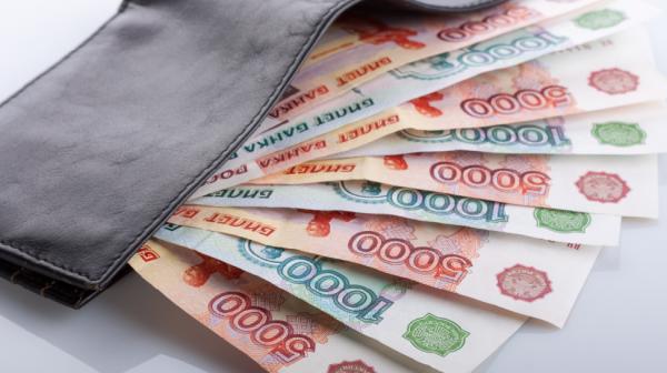 российские рубли в кошельке