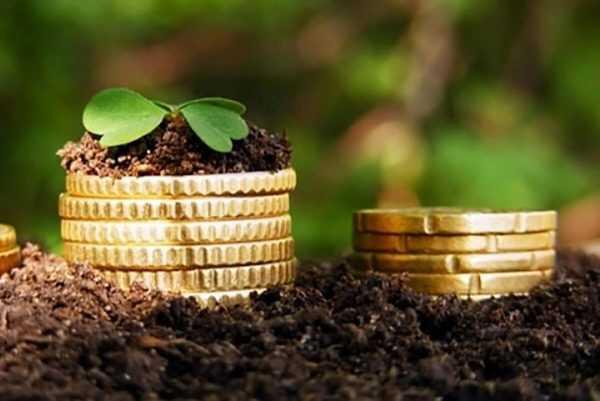 Сельскохозяйственный налог