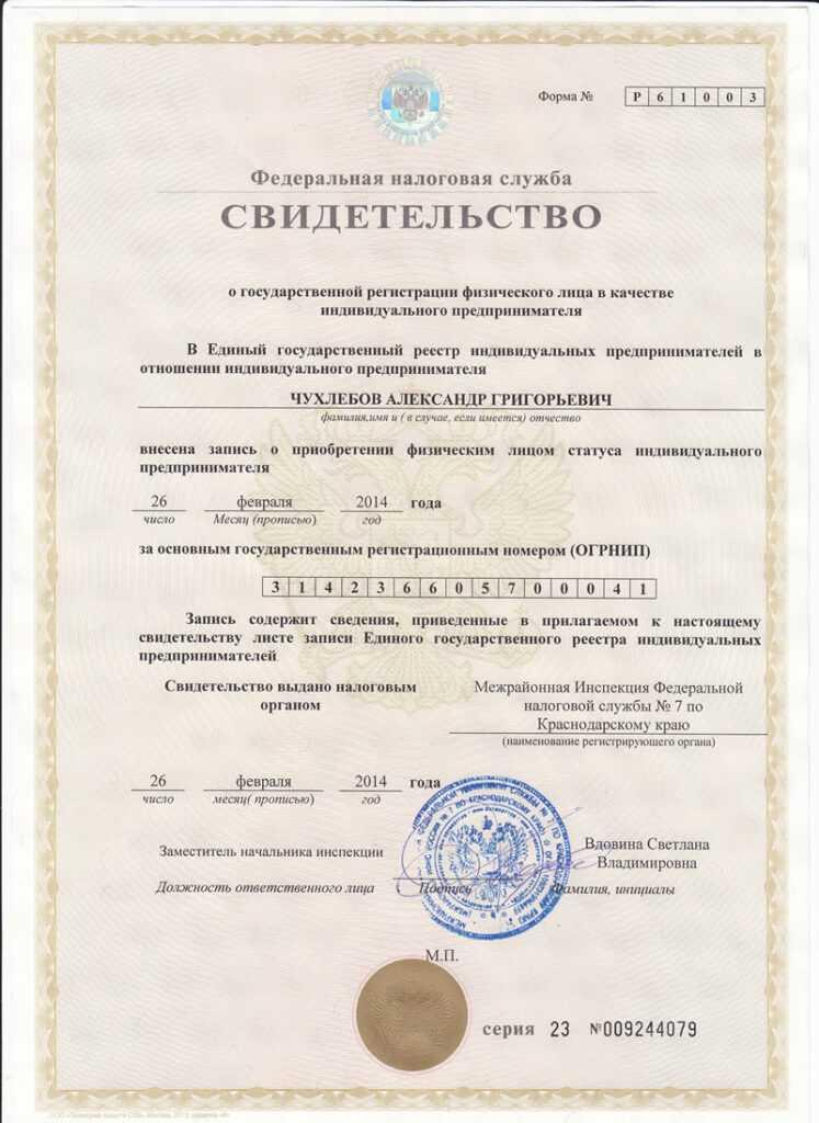 Свидетельство о гос регистрации физического лица в качестве ип налоговая требует доверенность электронной отчетности
