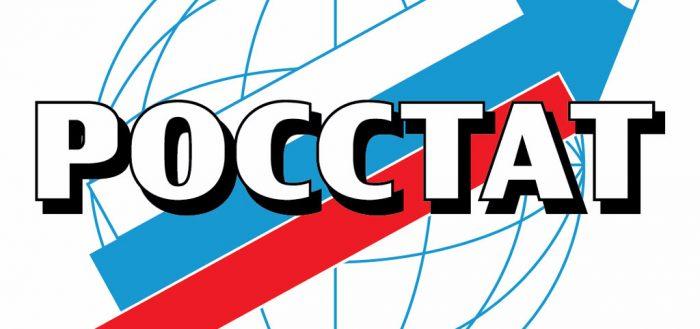 деятельность ИП в Росстате