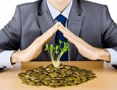 кучка монет и зелёный росток