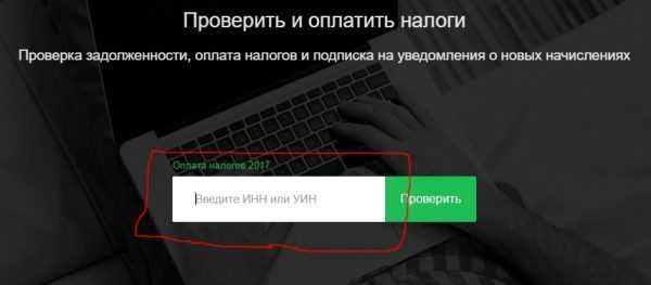 Скрин страницы сайта для ввода ИНН