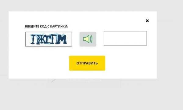 Скрин формы для ввода каптчи на сайте ФССП