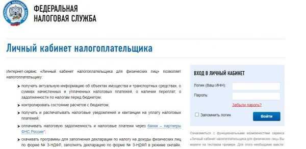 Скрин страницы входа в личный кабинет на сайте ФНС