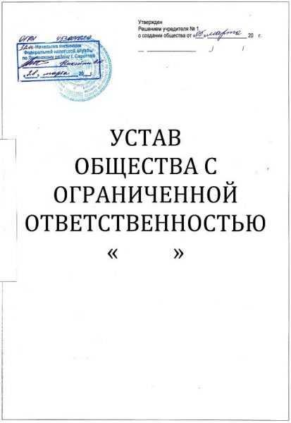 Устав созданного юридического лица