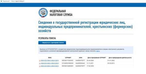Страница сайта ФНС РФ с результатами поиска ИП