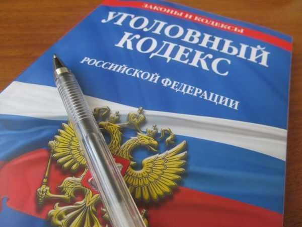 Уголовный кодекс РФ и ручка
