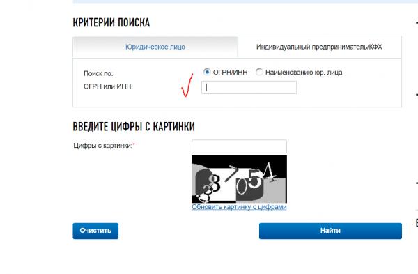 Поиск КПП — скрин с сайта ФНС