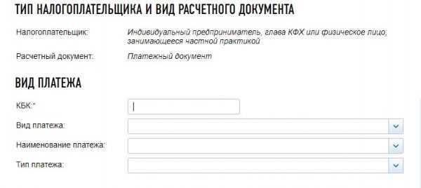 Оплата налогов ИП на сайте ФНС России, скрин 3