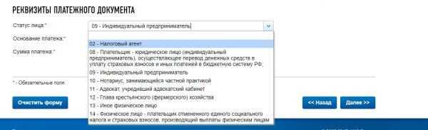Оплата налогов ИП на сайте ФНС России, скрин 5