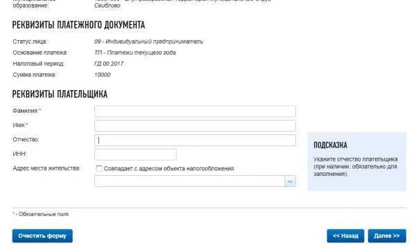 Оплата налогов ИП на сайте ФНС России: скрин 7