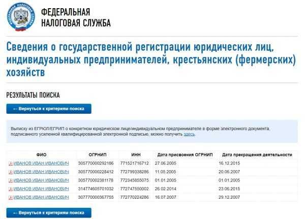 Результаты запроса в ЕГРИП для заданных реквизитов