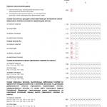 Нулевая декларация УСНО, стр. 2