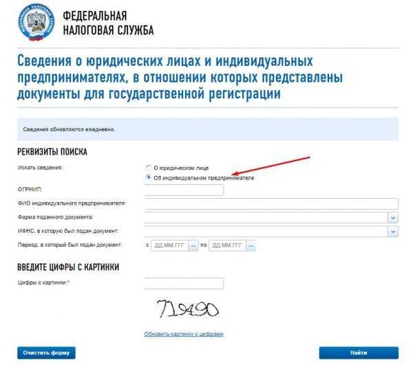 Форма запроса информации об ИП, которые только подали документы на регистрацию