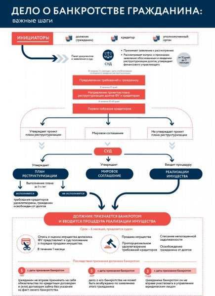 Инфографика по банкротству