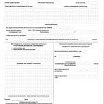 Декларация по ТН, лист 1