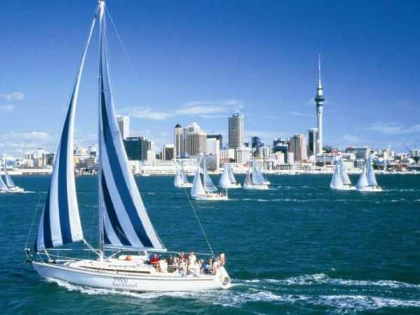 Регата в Новой Зеландии