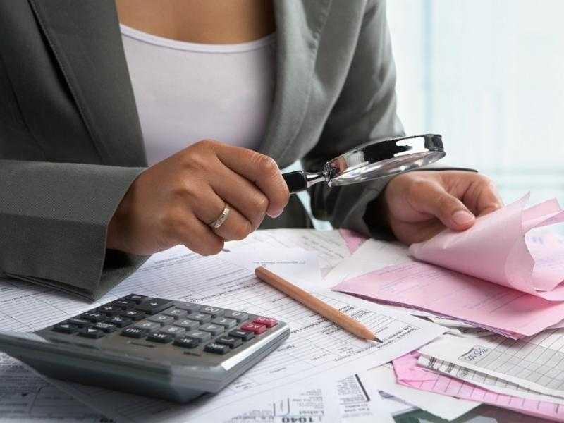 Налоговые проверки ИП — виды, особенности, сроки прохождения, выходы и последствия