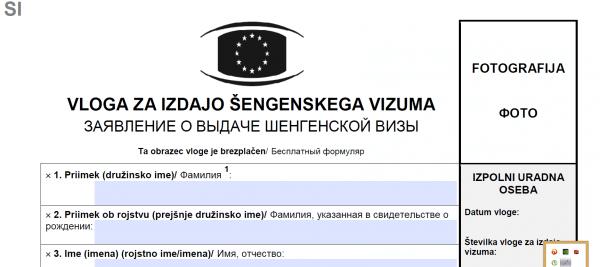 Скриншот заявления на визу