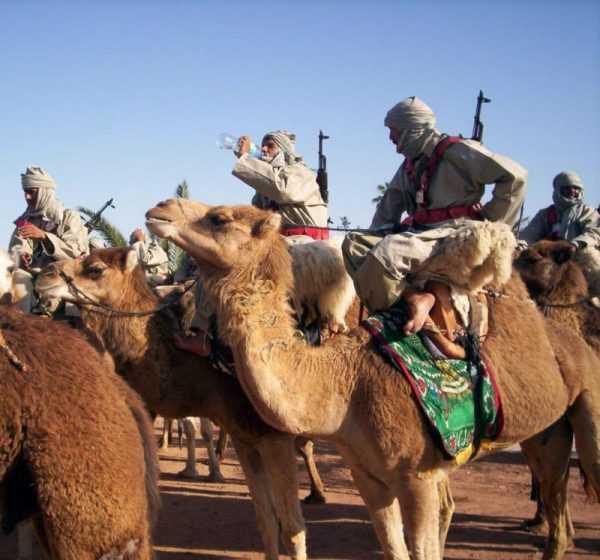 Вооружённые берберы на верблюдах