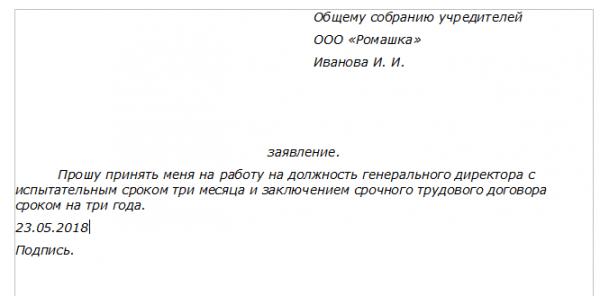 Пример заявления о приёме на работу директора