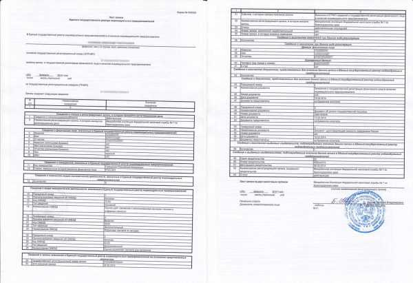 Лист записи ЕГРИП