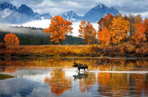 Пейзаж США