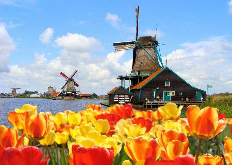 Переезд на пмж в голландию