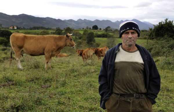 Работник животноводческой фермы