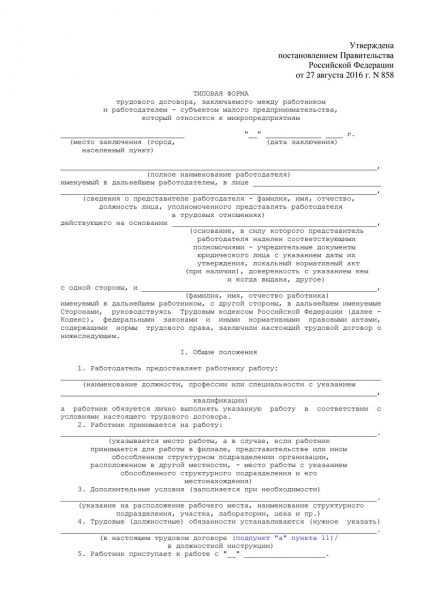 Типовая форма ТД для микропредприятия