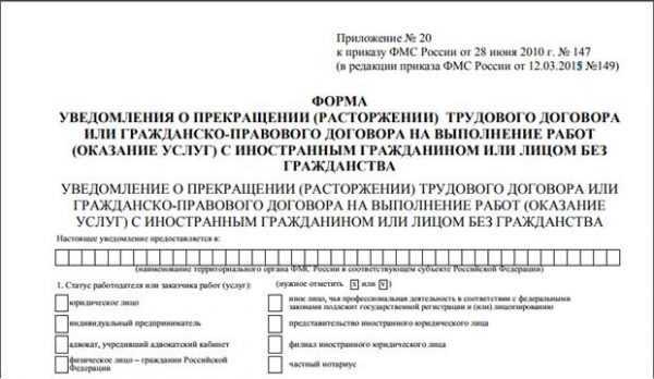 Образец фрагмента уведомления о расторжении трудового договора с иностранцем