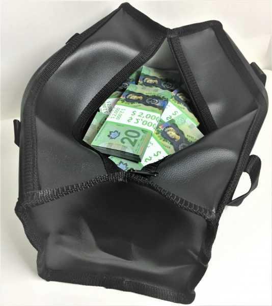 Пачки канадских долларов в сумке