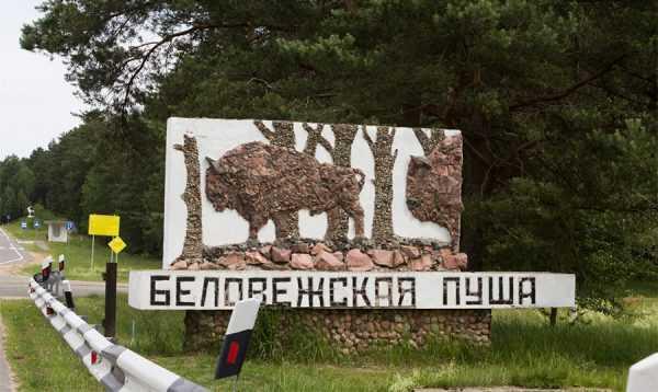 Въезд в заповедник Беловежская пуща