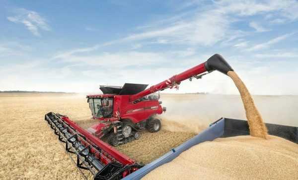 Комбайн убирает пшеницу