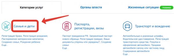 скиншот с сайта госуслуг, на котором выделена вкладка «се