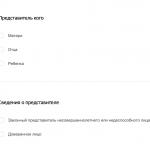 Скриншот заявления, если его подает представитель
